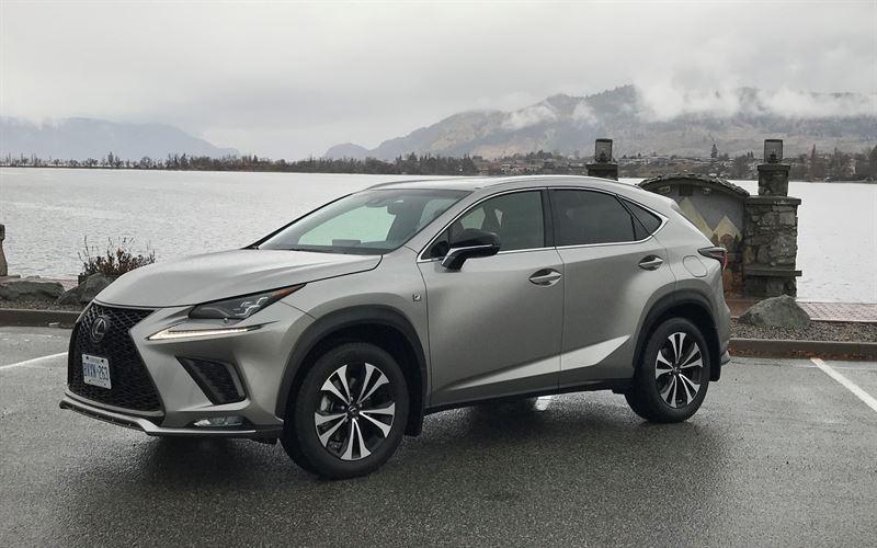 Lexus-NX-xe-5-cho-gam-cao